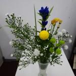 ◇今週のお花◇ ピンポンマム!