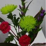 ◇今週のお花◇ アナスタシアとりんどう
