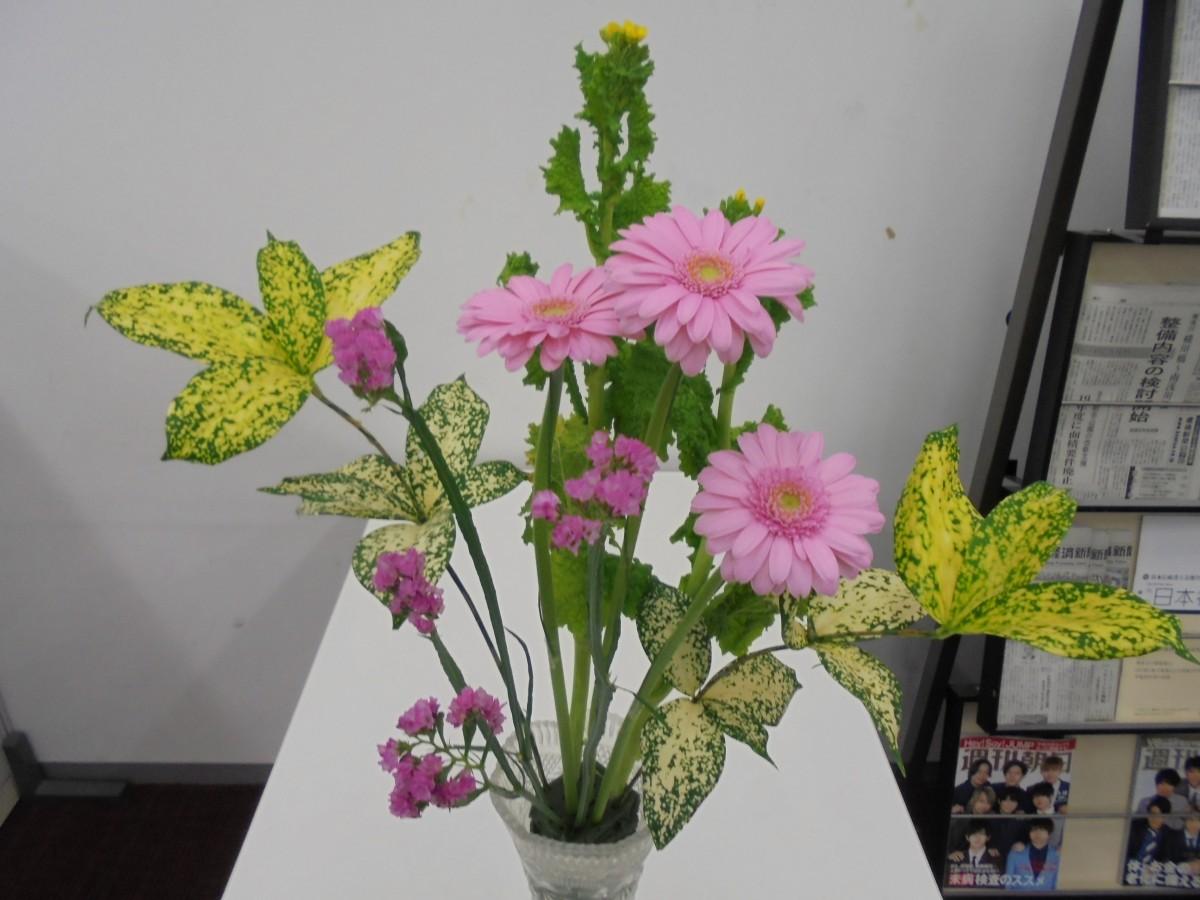 ◇今週のお花◇ 心和む花々