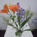 ◇今週のお花◇ 先週のセミナー♪