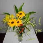 ◇今週のお花◇ 6月のセミナはいつですか?