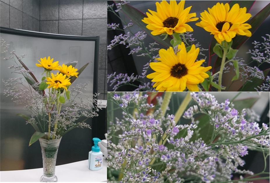 010628お花