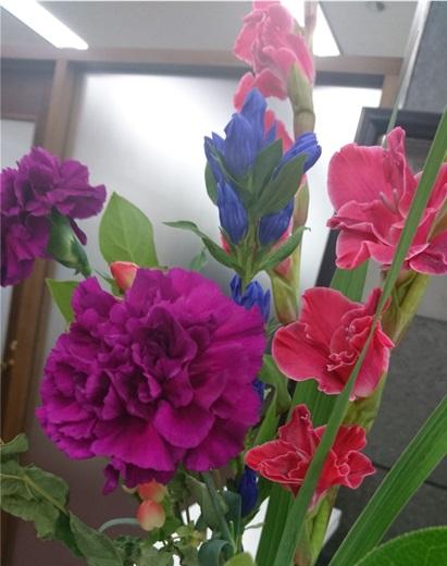 ◇今週のお花◇ グラジオラス!